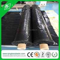 Large farming cultivation used plastic mulch layer