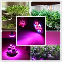 Buy Led lighting indoor LED grow light 450 watt Hydroponic Plant ...