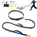 New Style Custom Nylon Promotion Dog Leash