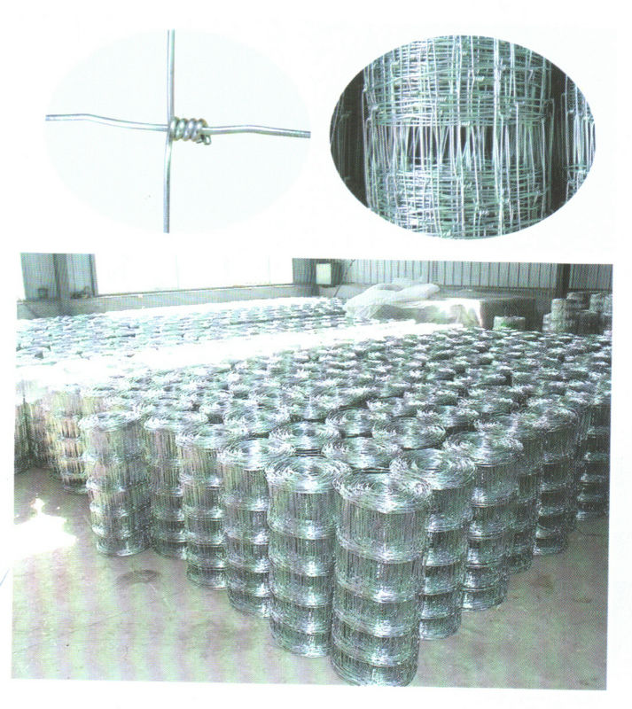 Reinforce mesh for cement pipe