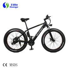 Nice look fashionable mountain snow fat tire electric bike