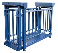 2015 new design hot sale competitive price and good quality Livestock Platform Scale