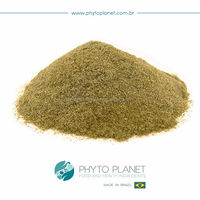 YERBA MATE EXTRACT