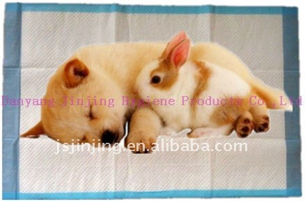 pet puppy pad for training dogs