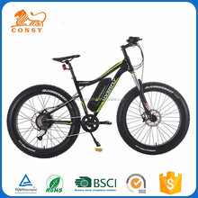 Electric Bicycle 36v 10ah Lithium Battery Fat Tire Mountain Electric Bike