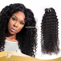 Free Sample virgin raw virgin malaysian hair kinky curly human hair braiding no tangle no shedding