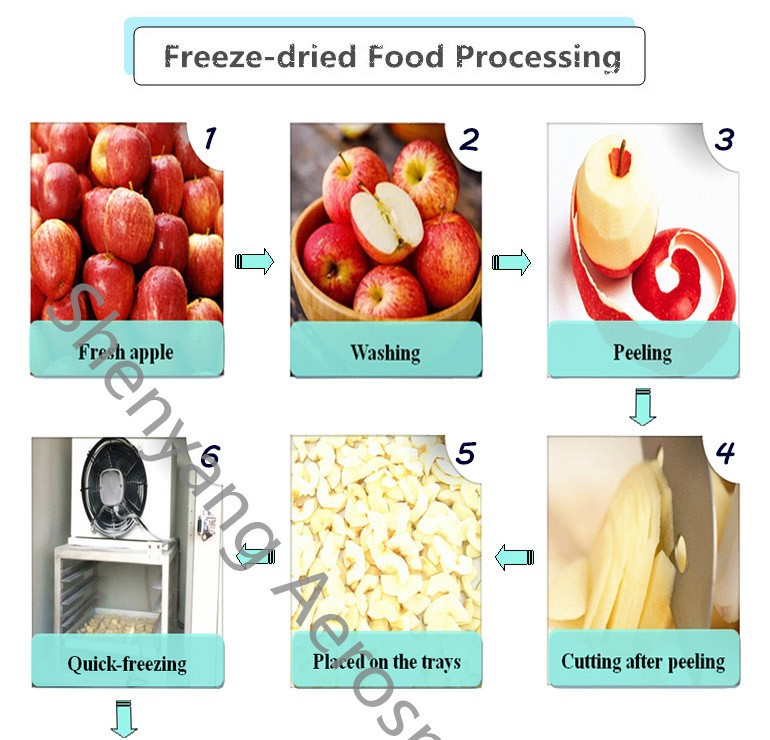 Convenient vacuum freeze dryer price for durian, mango, papaya, grape, Jackfruit