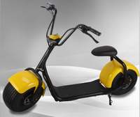 City Mobility Citycoco 800W Brushless Adult Electric Scooter 60V Electric Motorcycle