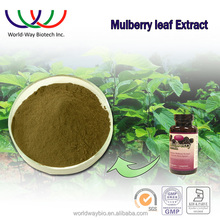 Competitive price mulberry extract dnj, DNJ extract powder, Mulberry leaf 2% dnj extract