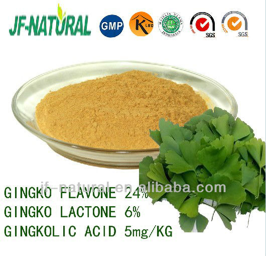 Ginkgo leaf extract Total Gingko Flavone 24%