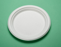 custom printed disposable paper plates / Disposable paper square plate