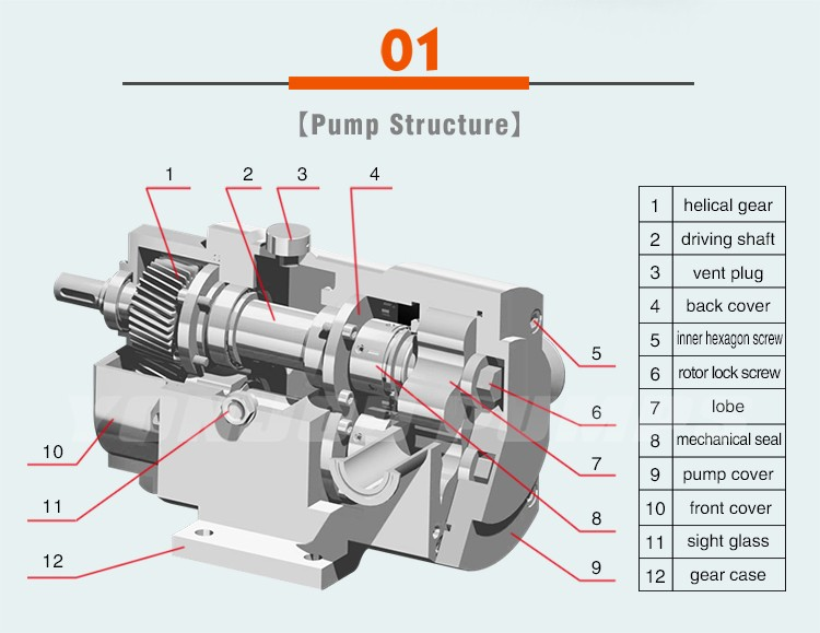 YONJOU Brand Stainless Steel Rotary Lobe Pump, food grade sanitary stainless steel pump