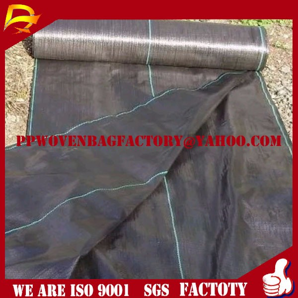 China PP Weed Barrier Mat with Line China Weed Mat, Ground Cover