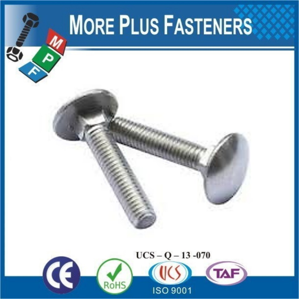 Made in Taiwan Black Phosphate Stainless Steel Long Zinc Plated Mushroom Head Square Neck Carriage Bolt