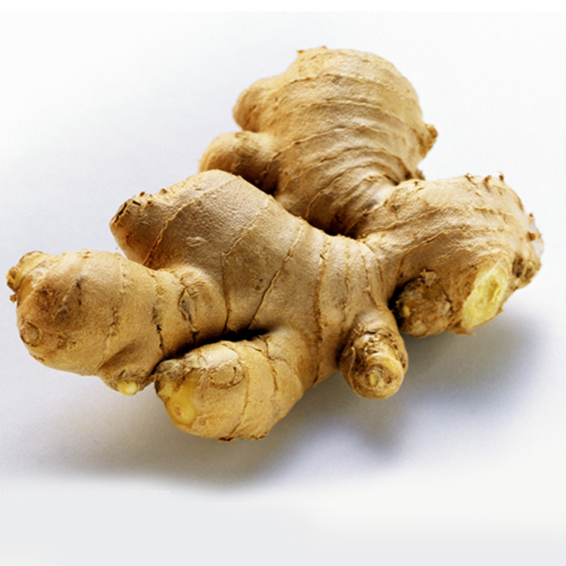 Old type fresh raw ginger export with cheap wholesale price and high quality