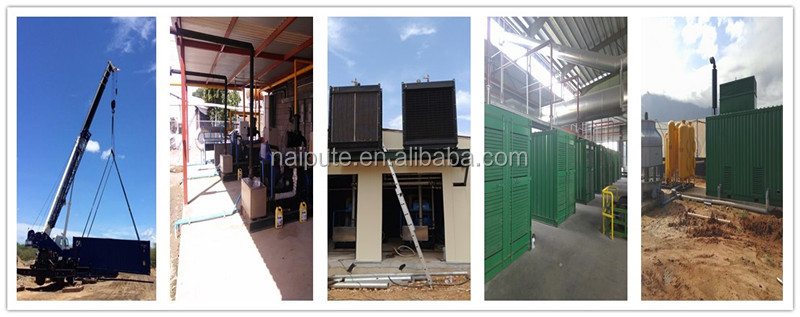 10-1000kW biogas generator with CHP