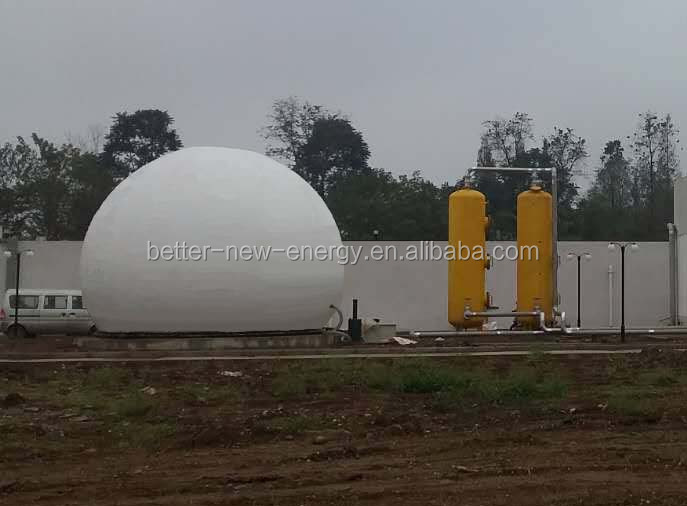 Biogas pretreatment biogas scrubber