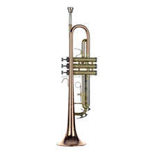 Cheap rose trumpet /Golden Lacquered Bb key Student Trumpet/rose brass