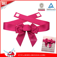 2016 Character Celebrate Satin Ribbon Bow