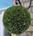 30CM Olive Green Topiary Ball Hanging Ball