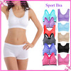 In stock Supply Wholesale Sports Bra