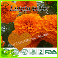 Marigold flower extract/xanthophyll/lutein ester