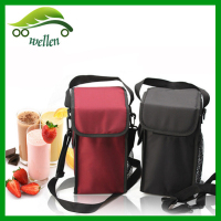 2015 New Style Food Use Polyester Material Insulated Cooler Lunch Bag For Frozen Food