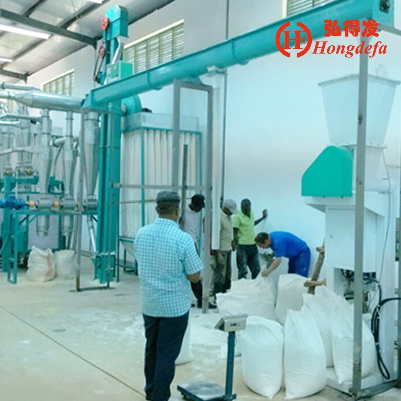 5-1000t new advanced wheat /maize/corn flour mill plant for export