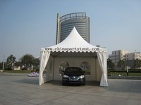 Pinnacle Car Parking Tent