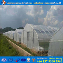 PROMOTION creat much better growing conditions Good looking film cover green house for tomato cucumber lettuce