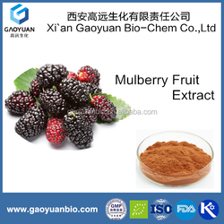 Chinese Supplier, Raw Material 100% Natural Mulberry Fruit Extract