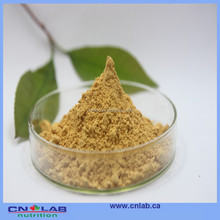 High Quality Natural White Willow Bark Extract Salicin