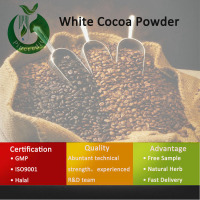 Cocoa Powder/Cocoa Powder Price/White Cocoa Powder