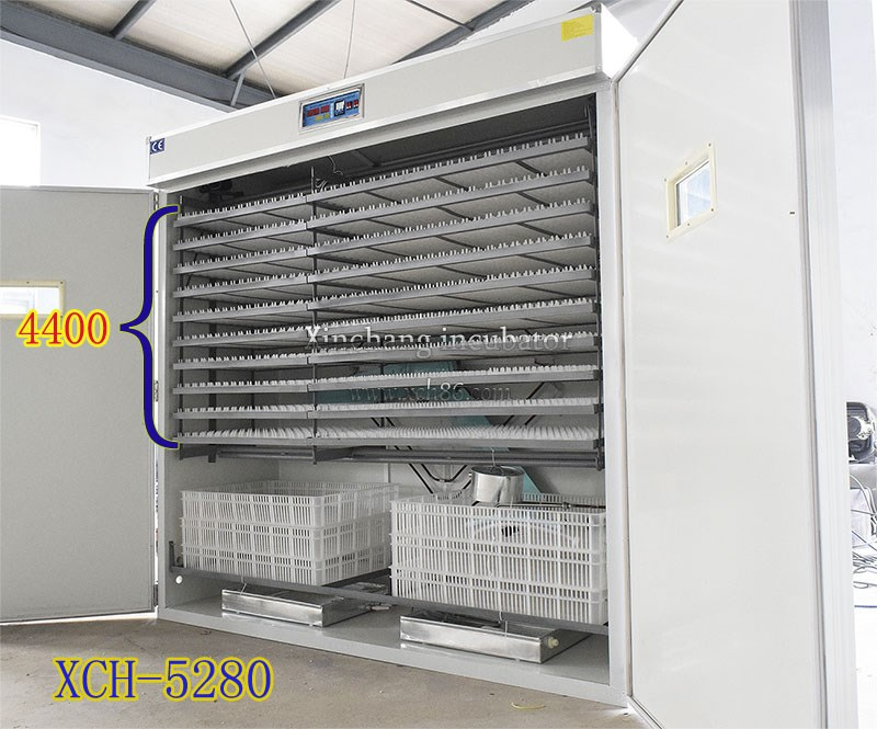 2016 best selling poultry incubator machine 5000 eggs incubators for hatching 5280 egg incubator