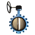 lug butterfly valve with gear
