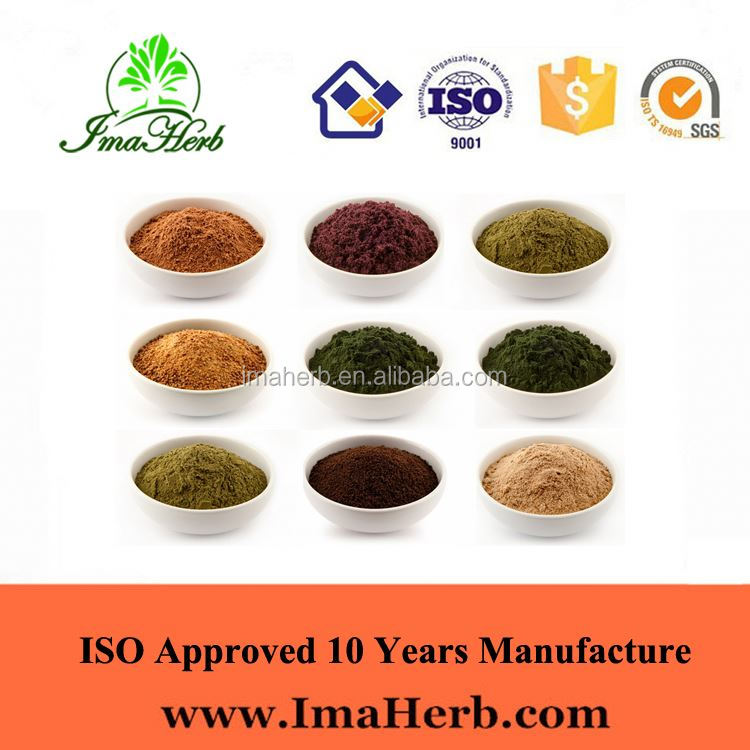 ISO Appreved ISO Certified dried bilberry