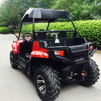 Adult 200cc EPA approved china nbluck buggy price