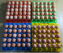 Hot sale stackable egg tray plastic egg tray in color with free sample