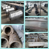 16# wire gauge electrical wiring/ galvanized iron wire
