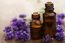 lavender plant extract massage essential oil