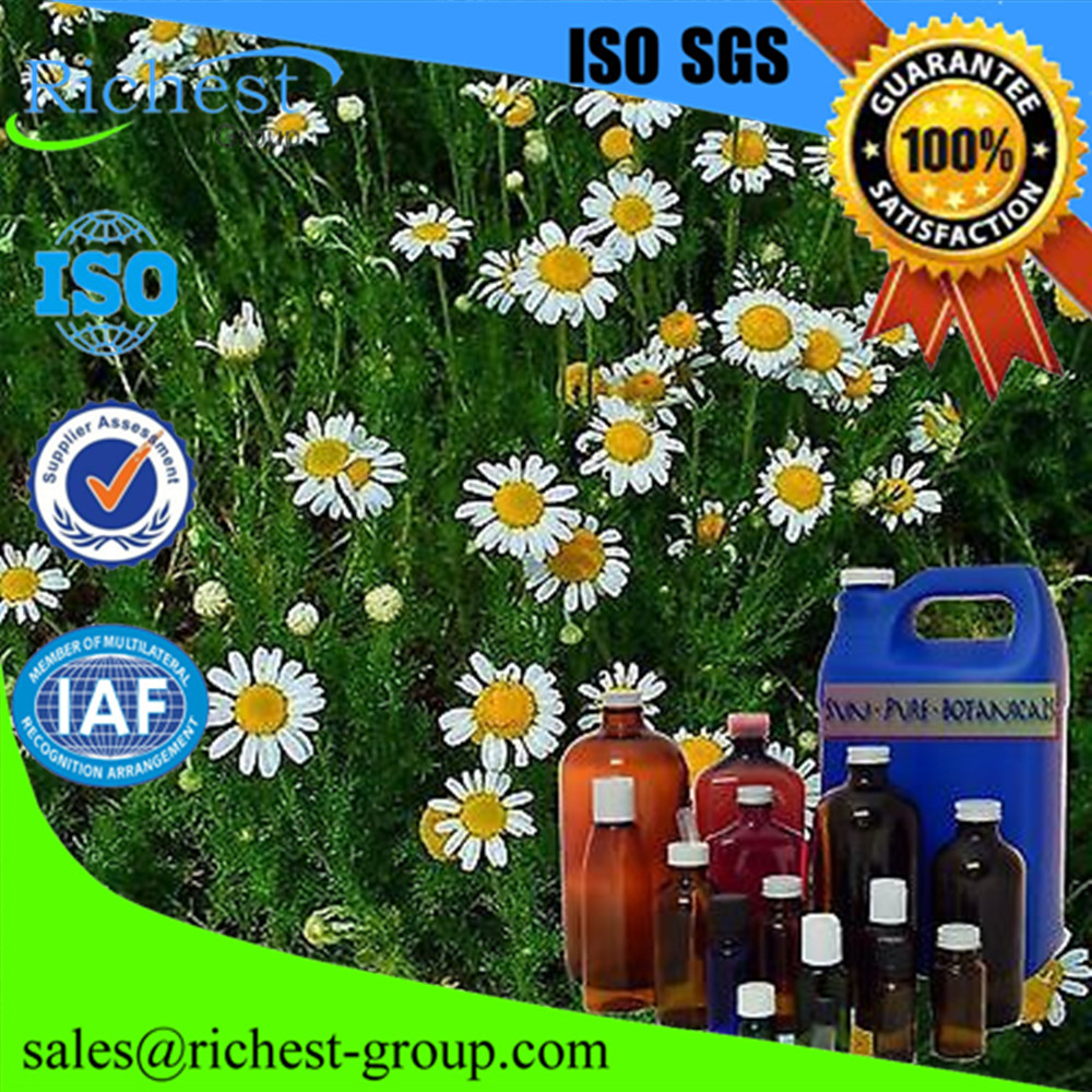 Natural Chamomile Oil 99% /CAS:8015-92-7/ Chamomile Extract