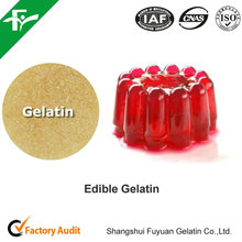 High Transparency Halal Food Grade 220 Bloom Gelatin Powder For Jelly Products
