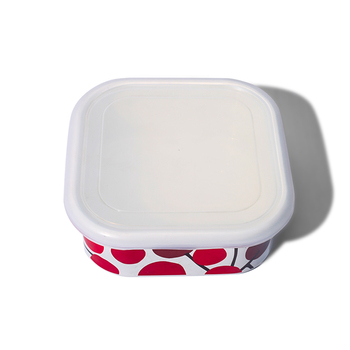 Colorful enamel lunch box