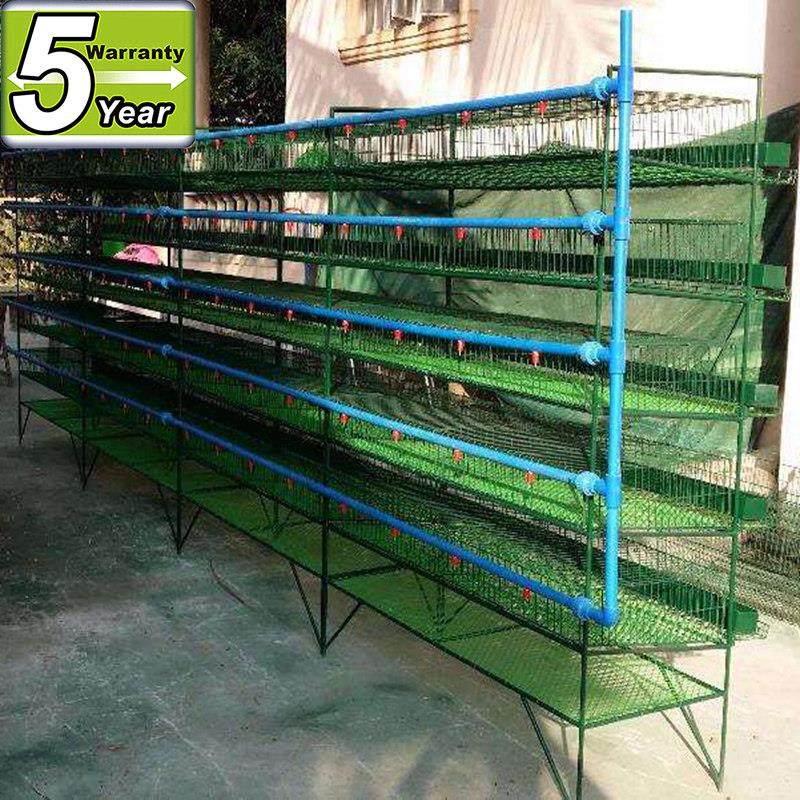 metal layer quail cage for sale