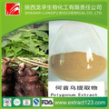 High quality foti extract