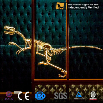 MY-Dino DS-065 Life Size Golden Dinosaur Skeleton for Display