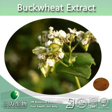 Fagopyrum Tataricum Extract, Tartary Buckwheat Extract by 3W Supplier