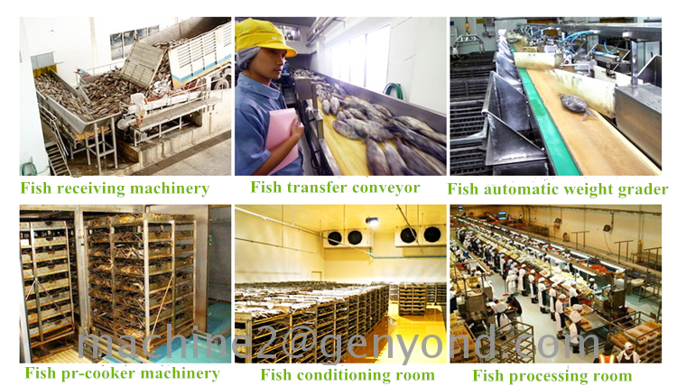 HACCP seafood canning machine best quality