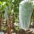 PP non woven garden fleece, frost protection fleece