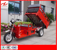 150cc Dumping Cargo Three Wheel Motorcycle with Smart Apperance